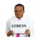 stress2014